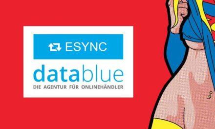 eBay-Hilfe von eSync: Artikeldetailseiten bearbeiten & synchronisieren