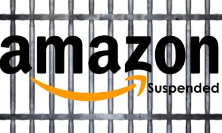 Statistik: Amazon Seller Suspendierungen 2017