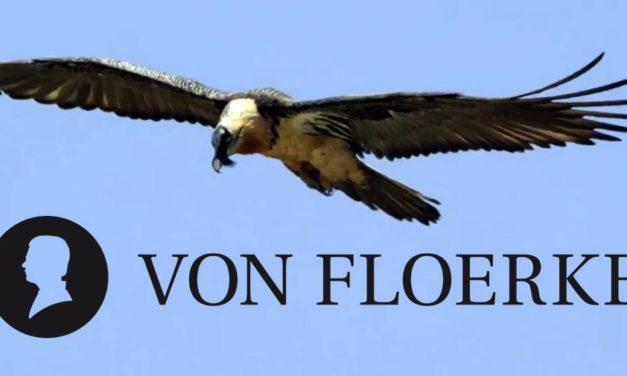 So steht es wirklich um von Floerke